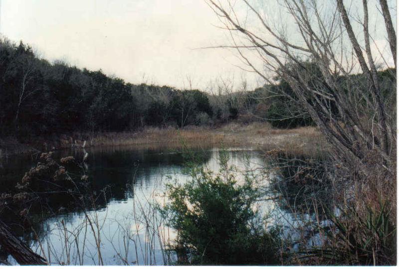 Pond 1990s