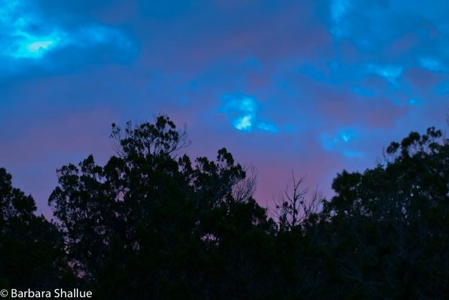 Sunrise August 2012-0261