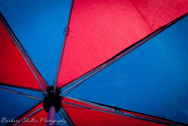 Umbrella jan 11 13-0032-2