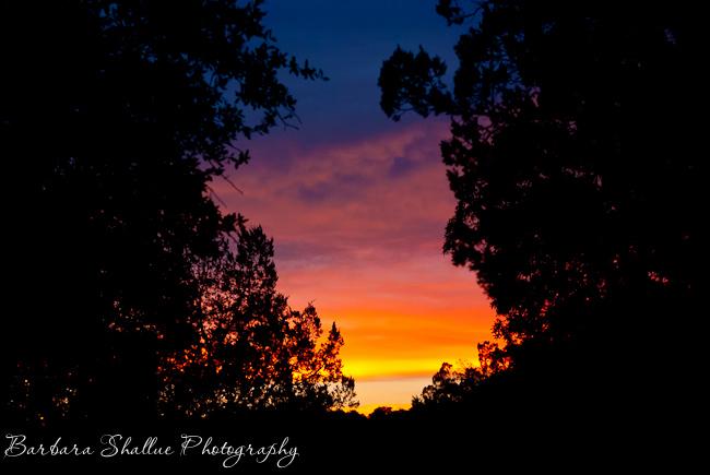 Sunset july 11 13-32