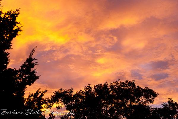 Sunrise nov 8 13-0170