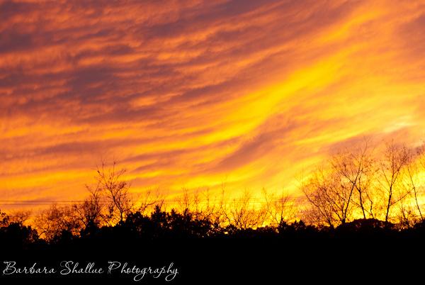 Sunset dec 30 2013-0132