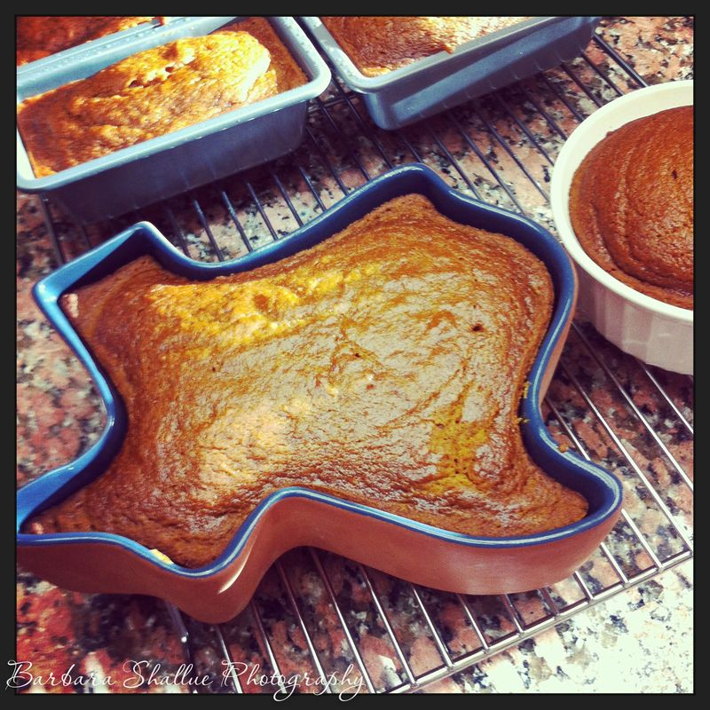 Pumpkin bread-1475