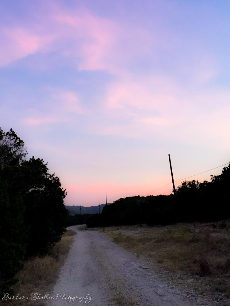 Pink morning aug 2016-6810